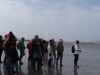 12_panorama-groupe-plage